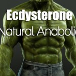 Natural-Anabolic-BODYBUILDING-DIET-TIPS