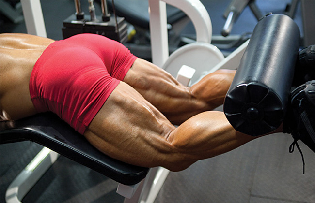 Supplements for leg muscle growth