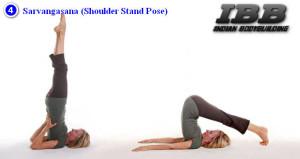 sarvangasana shoulder stand pose  indian bodybuilding