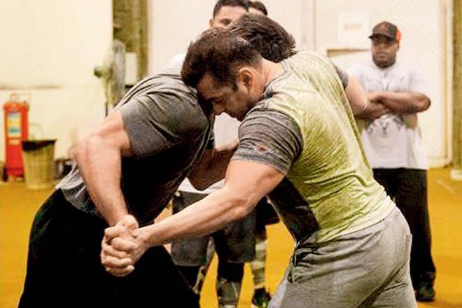 Salman khan sultan training