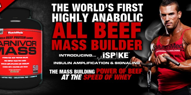 Best supplement combination for lean muscle gain