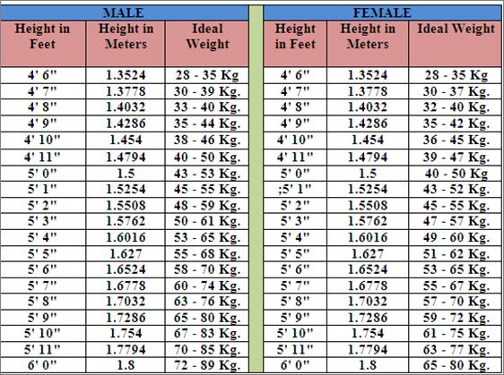 Body Weight BMI