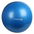 Strauss Anti Burst Gym Ball Review and Price