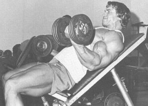 Arnold Biceps Workout