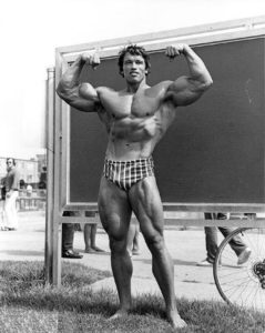 Arnold Schwarzenegger Perfect Pose