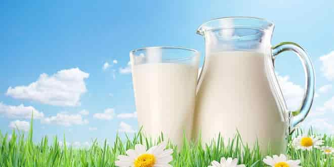 Dairy in Paleo diet plan