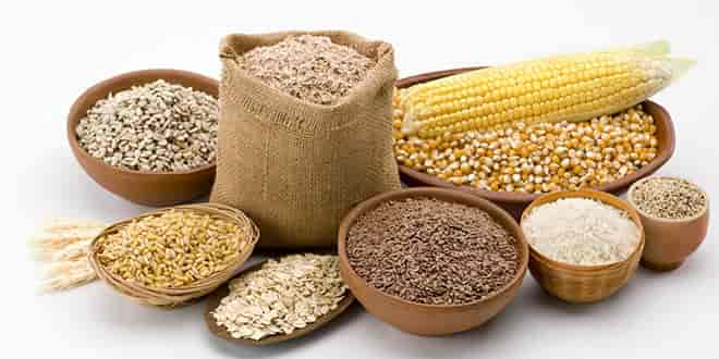 Grains in paleo diet