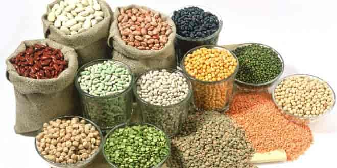 Legumes in paleo diet