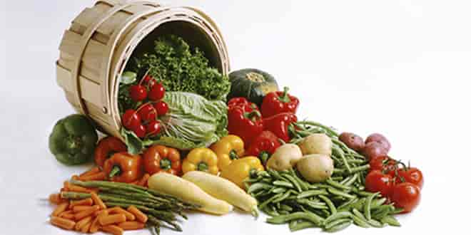 Vegetables in Paleo Diet Plan