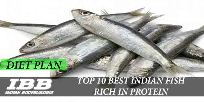 Top 10 Best Indian Fishes Or Seafood Rich In Protein Ibb