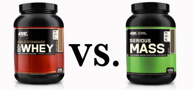 Difference between Protein Supplement and Mass Gainer