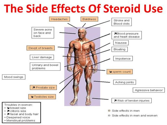 steroids effects on bones