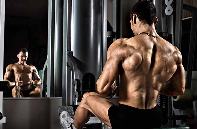 Why you need L Glutamine