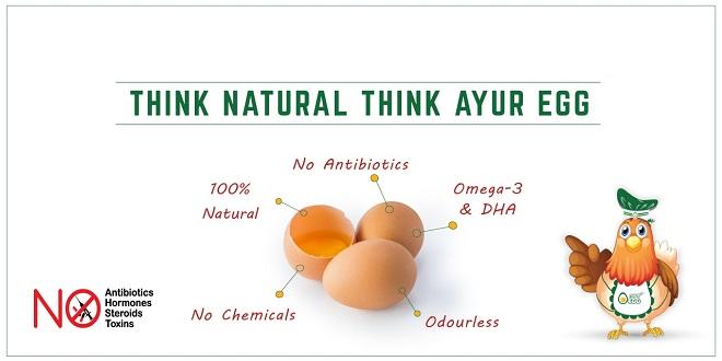 Ayur-Egg-Benefits